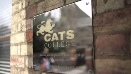 CATS Cambridge - лето